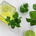 Tipologie di olio d'oliva